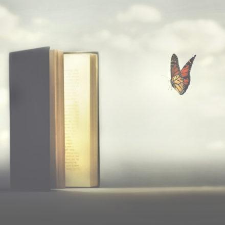 livre-papillon-vocation-1