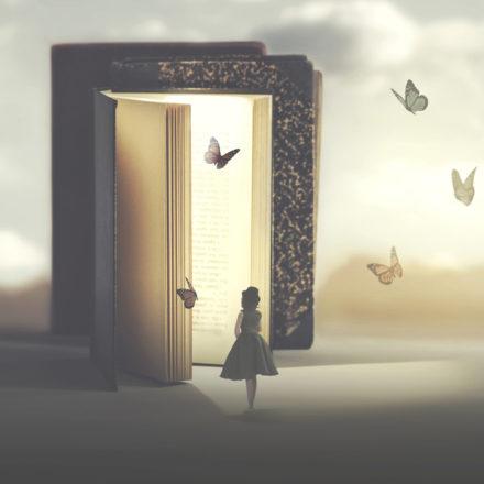 livre-papillon-vocation-2